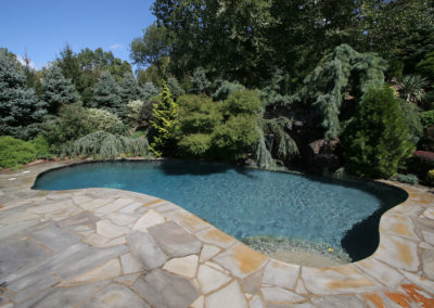 Pugliese Pools custom pool and landscaping